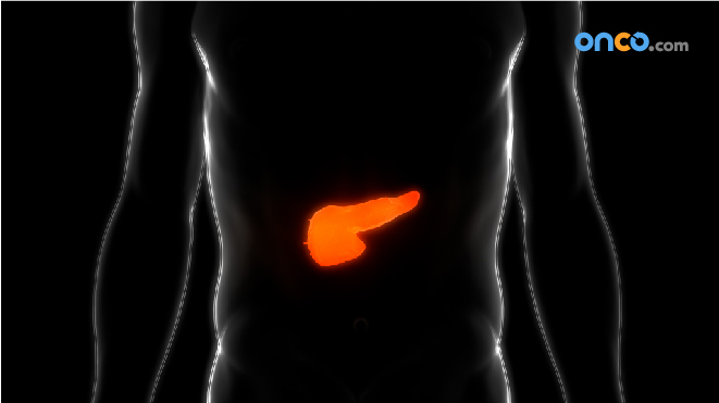 Visual representation of a pancreas