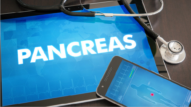 Picture of an iPad with the words pancreas on it