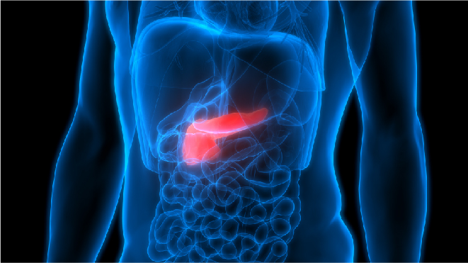 Visual representation of liver cancer