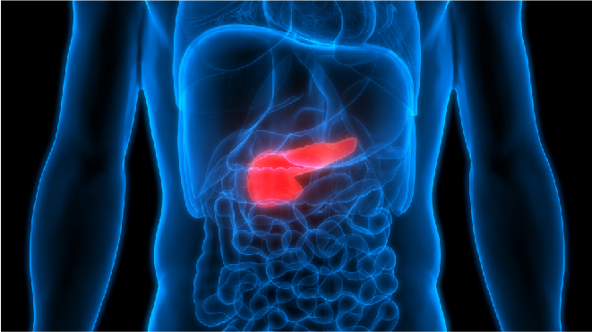 Gallbladder Cancer Survival Rates