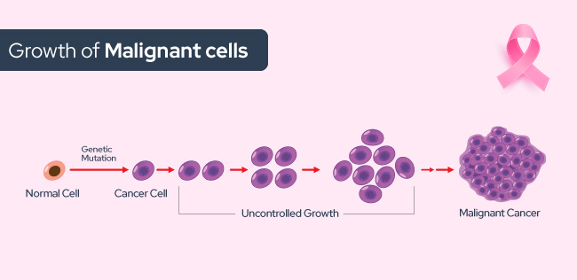 malignant cell growth