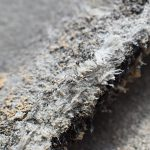 Asbestos and cancer
