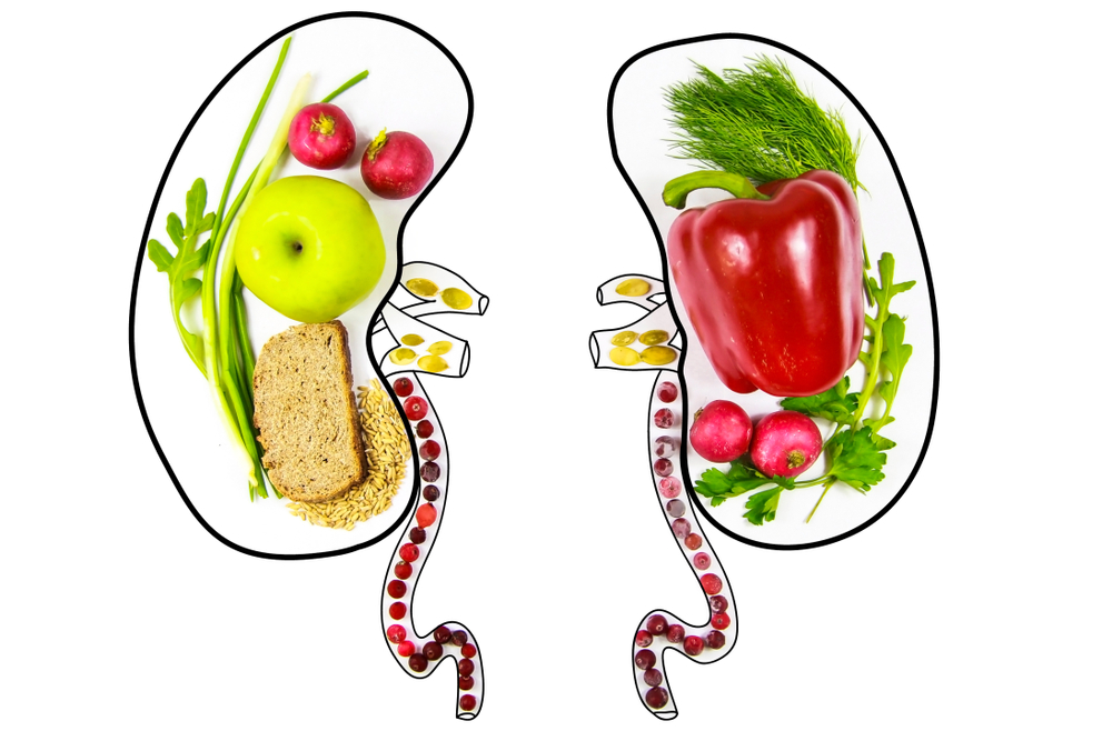 Diet tips for kidney cancer treatment