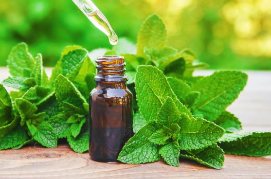 aromatherapy for coping with cancer