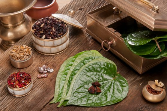 paan causes oral cancer