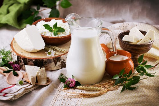 dairy for cancer diet