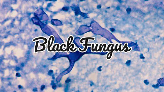 म्यूकोर्मिकोसिस तब होता है जब कोई व्यक्ति हवा में फंगल बीजाणुओं को अंदर लेता है।