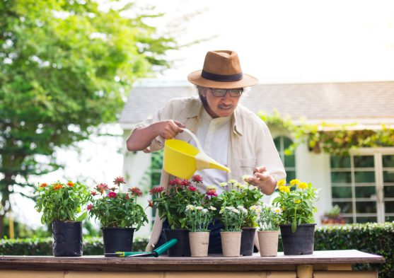 gardening for cancer patients