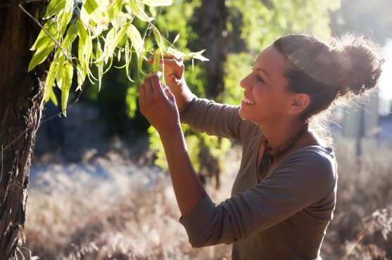 Nature for cancer recovery