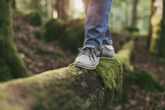 benefits of nature for cancer patients